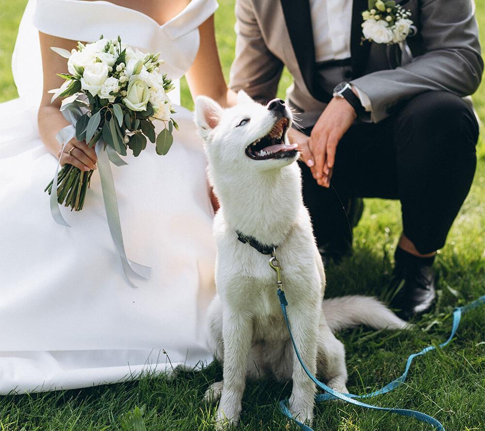 Ristorante Polignano a Mare Matrimonio